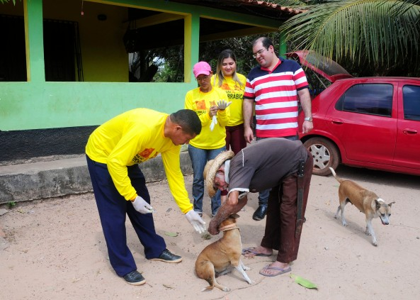 Momento da abordagem e vacinação do animais nas casas