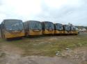 Sete novos ônibus escolares